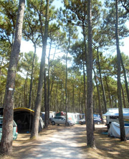 Camping pitches for tents, caravans and motorhomes